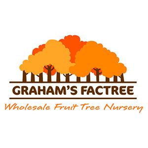 Graham's Factree